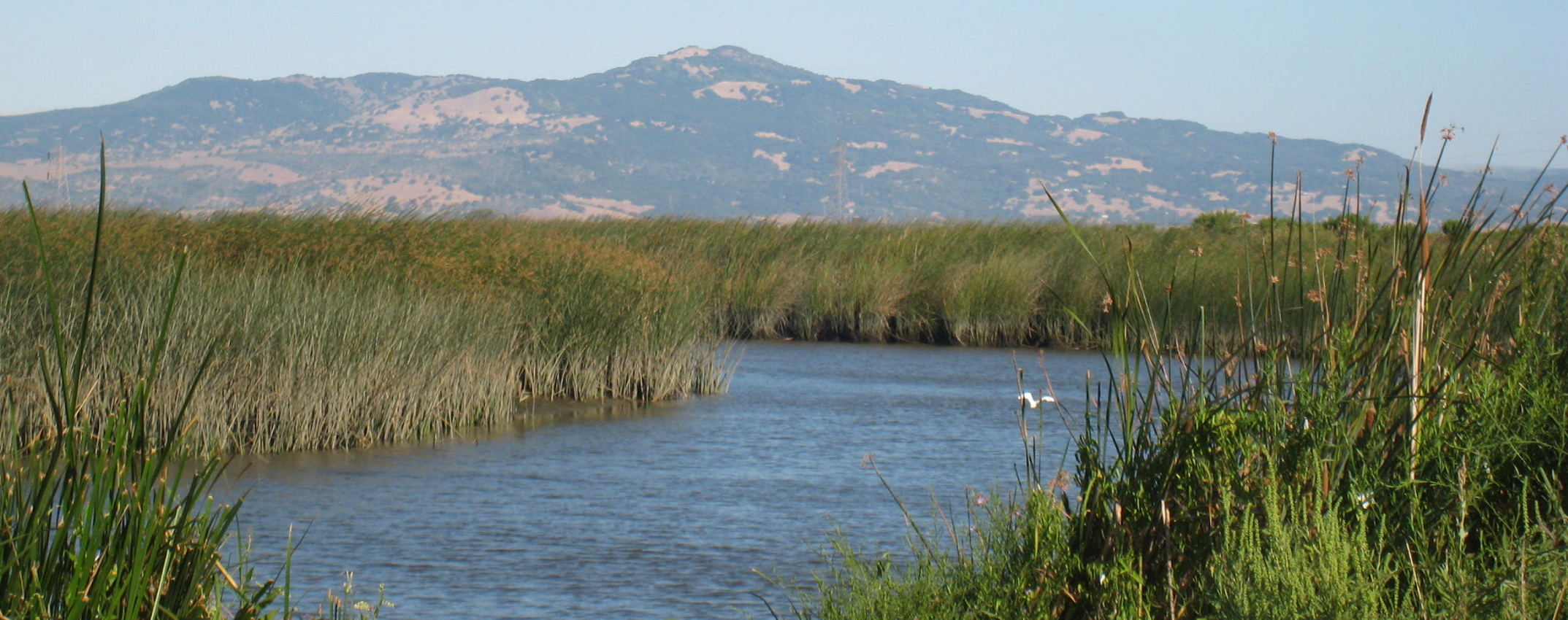 creek-and-mt-d